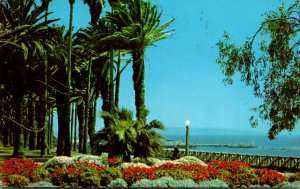 California Santa Monica Palisades Park 1962