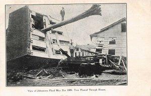 LPS57 Johnstown Pennsylvania Johnstown 1889 Flood Tree Floating Through House