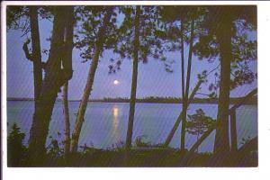 Moonlight Over Peninsula  Lake, Muskoka, Ontario,