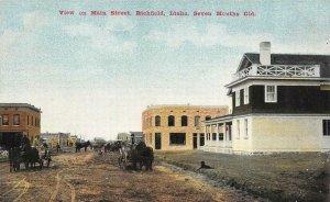 View on Main Street, Richfield, Idaho, Seven Months Old c1910s Vintage Postcard