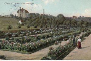 Chemnitz, Germany , 1909 : Rosarium im Stadtpark