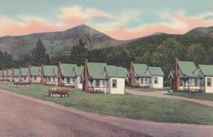 New Hampshire White Mountains English Village East Indian Head Curteich