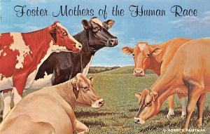 Post Card Old Vintage Antique Foster Mothers of the Human Race-Cows Unused