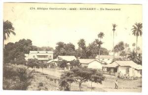 Afrique Occidentale, Un Boulevard, Konakry, Guinea, Africa, 1900-1910s
