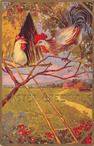 T Bieletto Easter~Rooster Visits Hen in Tree House~Gold Leaf Emboss~1908 PC