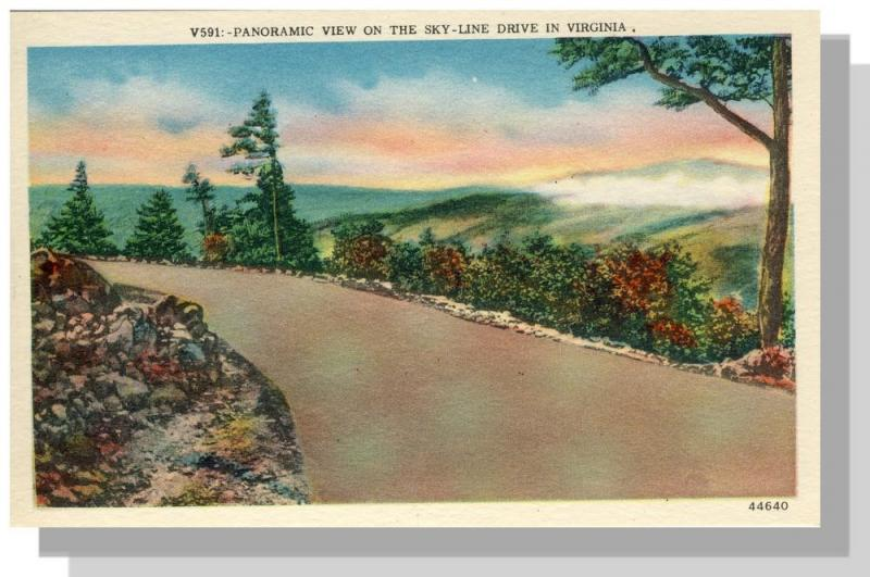Skyline Drive,Panoramic View,Virginia/VA Postcard,Near Mint!