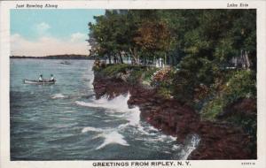 New York Greetings From Ripley 1945 Curteich