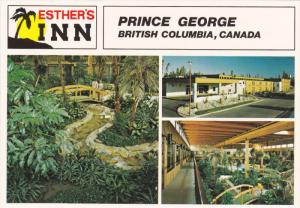 Multi-View, Esther's Inn, Garden, PRINCE GEORGE, British Columbia, Canada, 50...