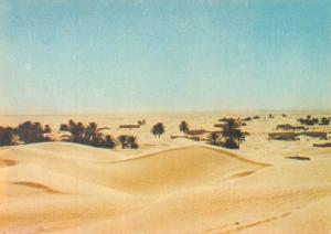 Tunisia Douz Tunisie Les dunes de Zaafran Sand Dunes of Zaafran