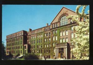 Cambridge, Massachusetts/Mass/MA Postcard, Harvard University Museum
