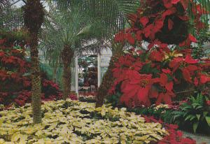 Interior View Of Conservatory Bellingrath Gardens Theodore Near Mobile Alabama