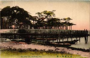 CPA The Pine tree Karasaki Omi JAPAN (671425)