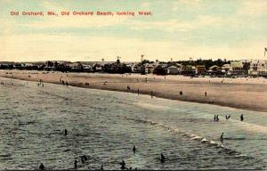Maine Old Orchard Beach Looking West 1913