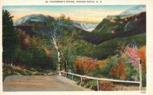 White Mts., Pinkham Notch, NH, Tuckermans' Ravine, Linen Vintage Postcard g8511