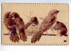231908 Bird HUNT sparrows Vintage embossed postcard