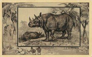Africa Safari 1909 Series by Mintz of Chicago - Rhinoceros - DB