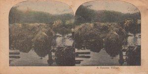 SV: A Samoan Village, 1905