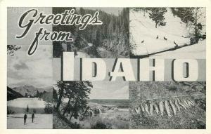 ID, Idaho, Greetings, Multi View, Graycraft