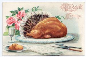 Roast Turkey with Tail Feathers Vintage Thanksgiving Postcard Embossed