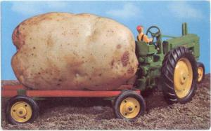 An Idaho Potato Exaggeration