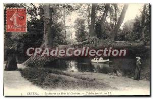 Old Postcard Creteil Marne Au Bras From Chapter pench the tree