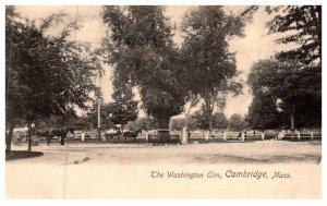 Massachusetts  Cambridge , Eashington Elm, Park, Horse wagons