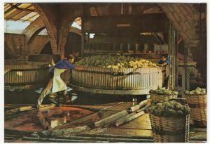 Spain; Cavas Codorniu, Pressing The Grapes, Advertising PPC, Unposted, c 1970's