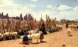 Navajo Indian Sheep Herd - Old Virginia City Gold Camp NV, Nevada