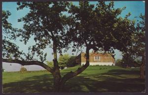 Saugeen Golf Club Postcard BIN