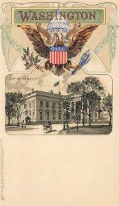 Washington DC The White House Embossed Raphael Tuck Postcard