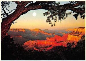 USA Arizona Grand Canyon National Park
