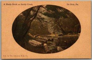 DuBois, Pennsylvania Postcard A Shady Nook on Sandy Creek c1910s UNUSED
