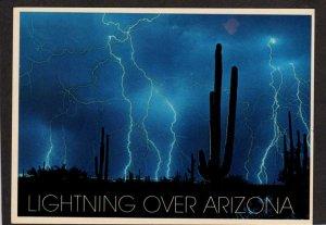 AZ Lightning Storm Cactus Cacti Arizona Night View Postcard