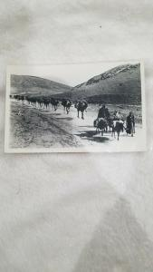 Vintage RPPC from the Middle East, Bedouin Camels  Caravan