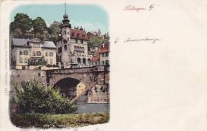 Uhlandhaus, Germanenhaus, Tubingen (Baden-Württemberg), Germany, 1900-1910s