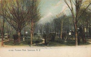 Forman Park  Syracuse NY New York  VTG P66