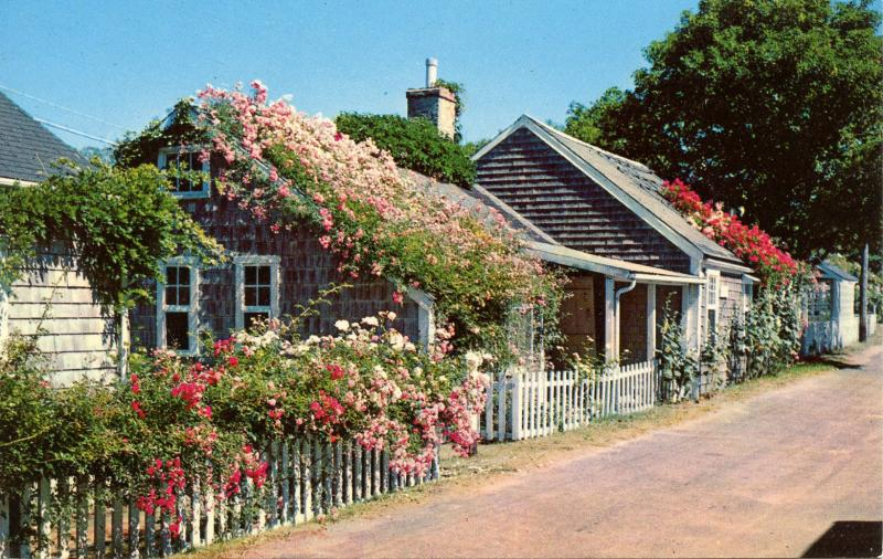 MA - Nantucket Island. Rose-Covered Cottage
