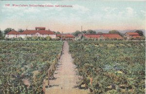 California Asti Italian-Swiss Colony Wine Cellars and Orchard sk6759