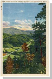 Gatlinburg,Tennessee/TN Postcard,Highway/Elkmont,Near Mint!