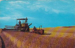 Tractor Combine Harvester Threshing Wheat In Eastern Washington