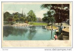 Duck On Lake In West Park, Allegheny, Pennsylvania, PU-1906
