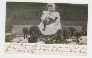 P2233 old postcard just hatch birds ostriches with young child