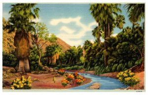 California  Palm Springs , Canyon