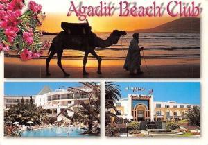 Morocco Agadir Maroc Beach Club, Swimming Pool, Camel Sunset Plage