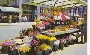 California San Francisco Sidewalk Flower Stands