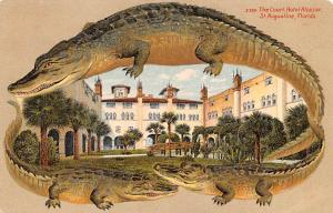 Alligator Border Post Card Old Vintage Antique S 556, The Court Hotel St. Aug...