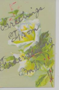 Fredericksburg Maryland Greetings From flowers glittered antique pc Z17785