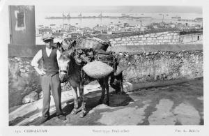 Gibraltar Spain Fruit Seller Donkey Real Photo Antique Postcard K30618