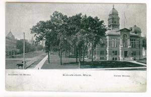 Kalamazoo, Michigan, Academy of Music, Court House, unused Postcard