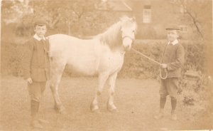 Two brothers with their white horse Old vintage English postcard